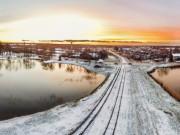 Elvijs Sisenis Ziemotais saulriets