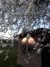 Inita Bekmane Pavasaris