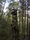 Jānis Sproģis Palīgā! Arī koki runā